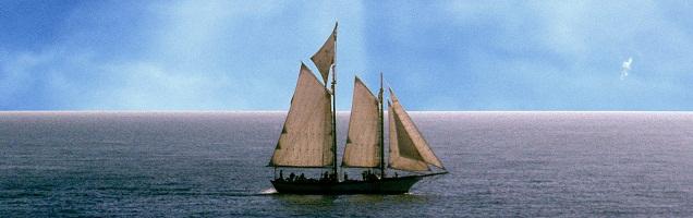 ΙΑΝΟΥΑΡΙΟΣ – ΦΕΒΡΟΥΑΡΙΟΣ  2005