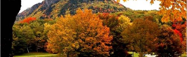 ΤΑΞΕΙΔΙ ΕΡΓΑΣΙΑΣ ΣΤΗΝ ΑΡΚΑΔΙΑ 6-8/10/2017